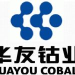 Huayou International Mining (Hong Kong) Limited